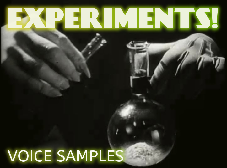 Experiments voicesamples
