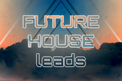 125 future house leads